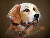 Franklin - Pastel Sketch - Dog Days Benefit at Earth Fare